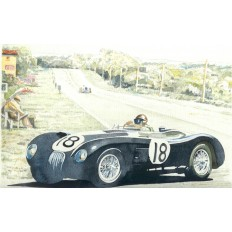 Jaguar C Type (2) Art Print by Giovanni Casander